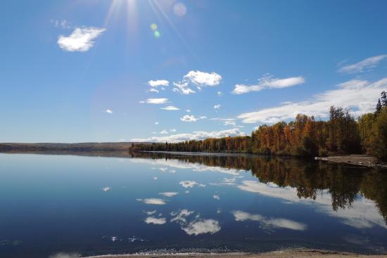 Rising Moon B&B : Beautiful Swan Lake