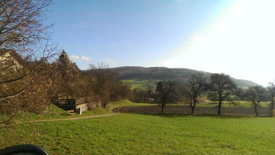 Breite Ancient Oak Tree Reserve: .