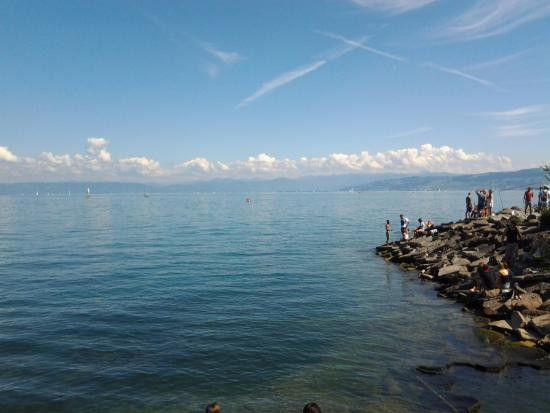 See Park: Bodensee Lake