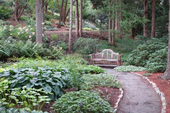 Deer - Picture of Cornell Botanic Gardens, Ithaca - TripAdvisor