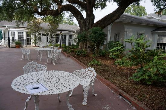 Natchez, MS: When they were sitting here, the tree was young and smaller