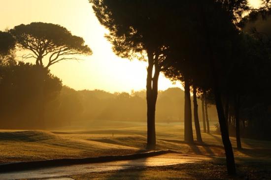 Kempinski Hotel The Dome : Morning golf fields preparation