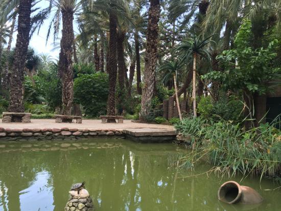 Vistas - Bild von Huerto Del Cura Jardin Artistico Nacional, Elche - TripAdvisor
