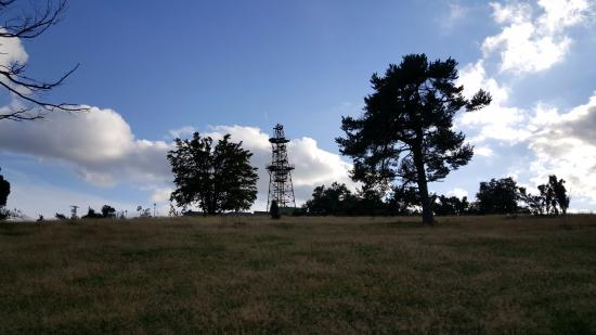 Arft, Alemanha: traumpfad Bergheidenweg 3