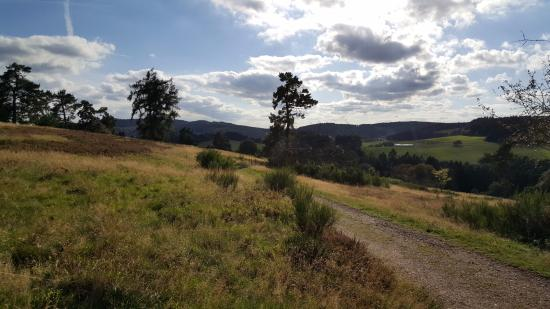 Arft, Alemanha: traumpfad Bergheidenweg 5