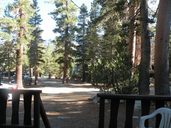 Woods Lodge: View of Lake George through the trees from Alpine Hut porch
