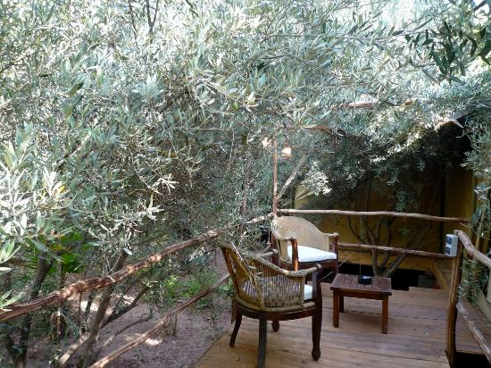 foto de le jardin tougana lodge spa archery marrakech