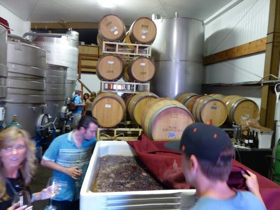 Christopher Creek Winery: fermentation vat