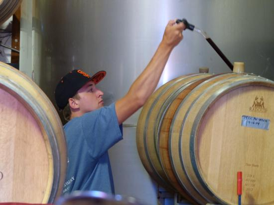 Christopher Creek Winery : barrel sampling