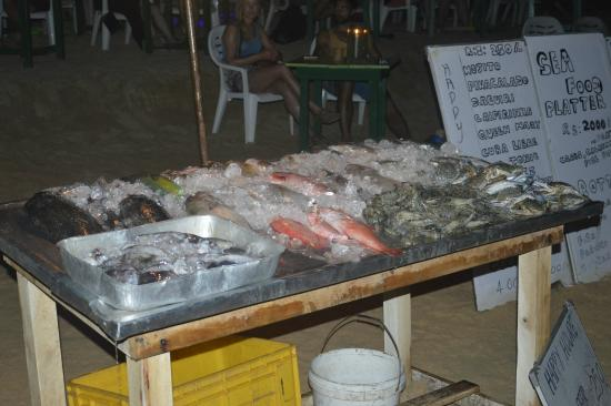 Vente de poisson sur la plage picture of sun shine beach for Vente de poisson