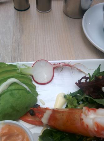 JJ's Cafe Restaurant