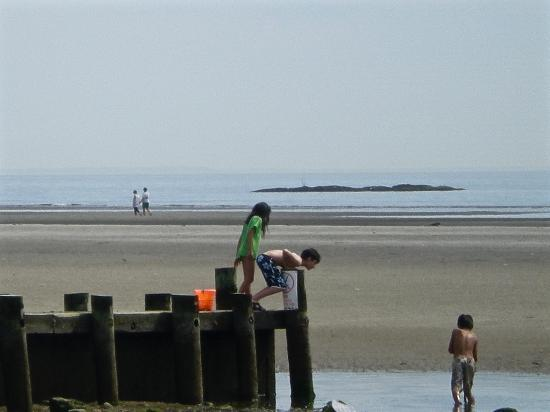 Children Playing At Harvey S Beach Near Sandbars Beyond Them Old Saybrook