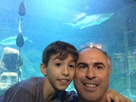 photo0.jpg - Picture of Sao Paulo Aquarium, Sao Paulo - TripAdvisor