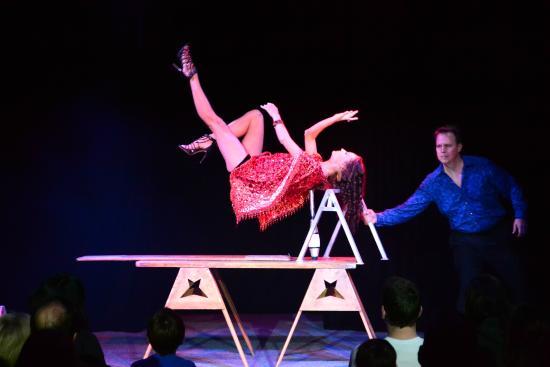 Davis Circus Of Illusion