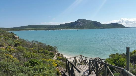 Kenilworth, South Africa: Langebaan