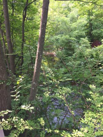 The Woodstock Inn on the Millstream: Mill Stream in Woodstock at the Inn