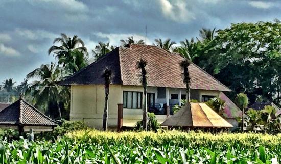 Nirmala Guest House: photo2.jpg