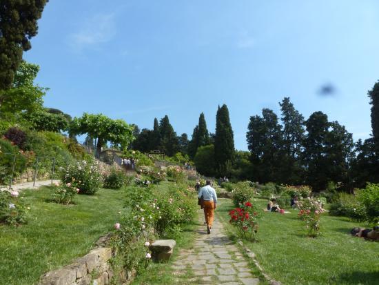 Orange domes of florence picture of folon e il giardino delle rose florence tripadvisor - Il giardino delle rose ...