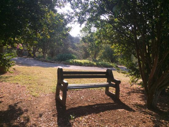 Pietermaritzburg, Sudáfrica: Benches to sit on and grassy spots for picnics