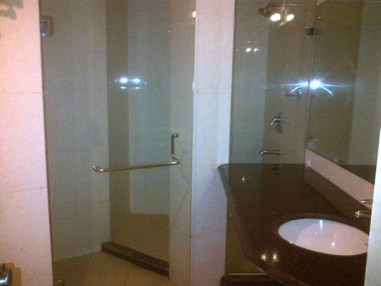 Hotel Saptagiri & ZO Rooms: Bathroom