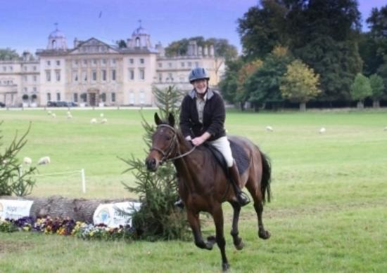 Horse Riding Surrey: The grounds