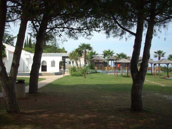 Kanegra, كرواتيا: Coco Bar