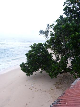 Mihiripenna Beach Resort: The beach outside MBR