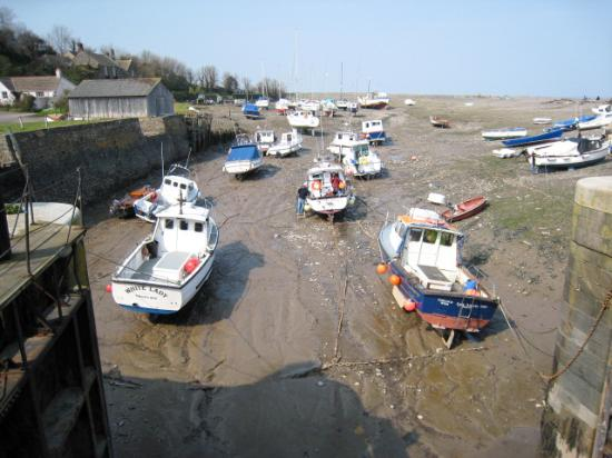 South West Sea Life Centre: Stranded