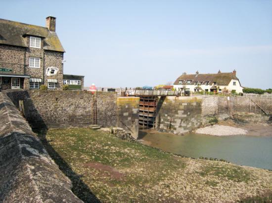 South West Sea Life Centre: Porlock Weir