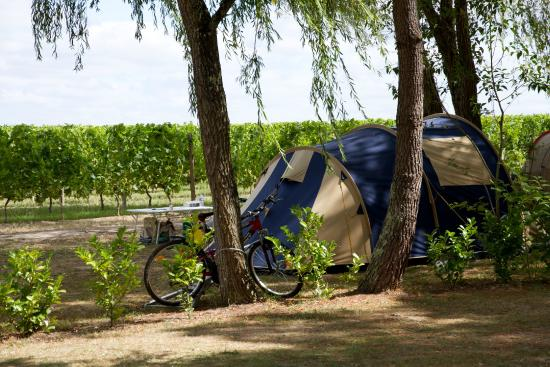 Camping Le Pressoir : emplacement tente au coeur du vignoble
