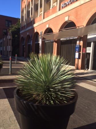 Novotel Toulouse Centre Compans Caffarelli: Hotel Entrance