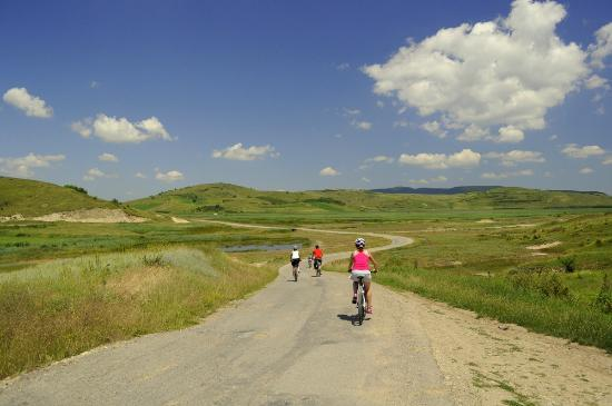 Bikealicious Romania - Day Tours