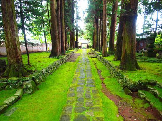 Jiunji Temple: 参道
