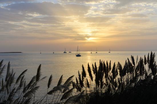 La Pelosa Beach: Spiaggia La Pelosa