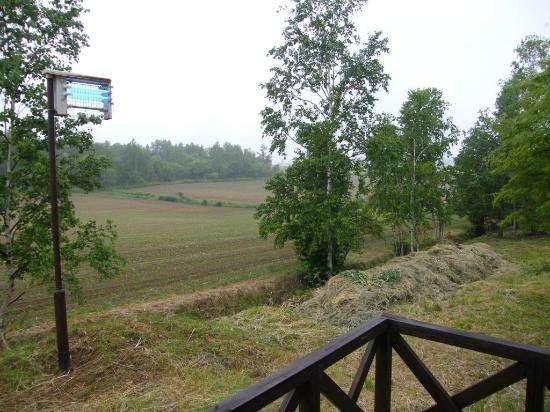Biei Potato no Oka : View from terrace