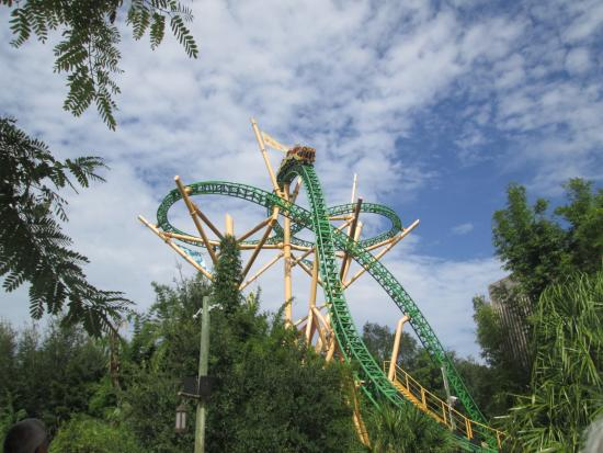 Attractions Picture Of Busch Gardens Tampa Tampa