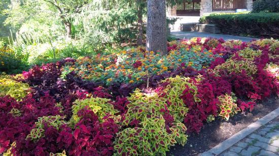 Edwards Gardens: Fromal Garden