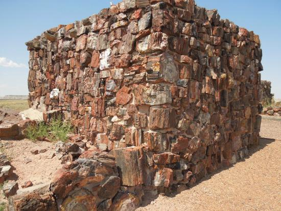 Agate House : Petrified wood used to build the structure