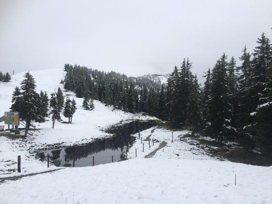 The Apsley Ski Lodge Photo