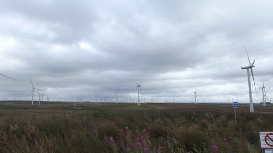 Whitelee Windfarm: Wind Turbine