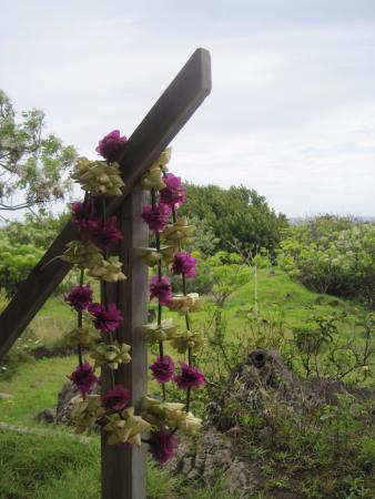 Tekarera Kainga Ora & Kainga Nui: Leis