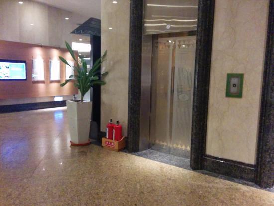 Parkview Hotel: nice elevator doors - very artistic