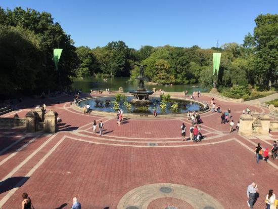 Central Park Tours & Bike Rentals: Down part of the park...