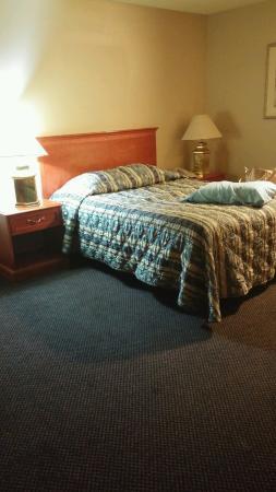 Clarion Inn & Suites: Bed/Worn Carpet