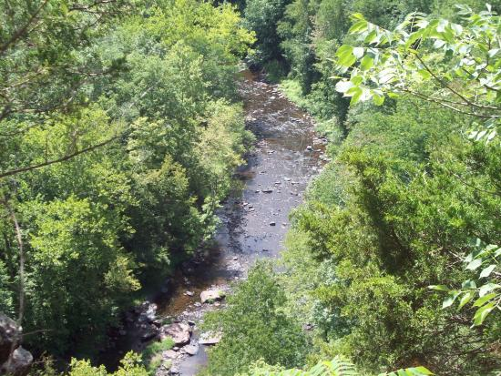 Porches on the Towpath: Looking down on Tohickson Creek