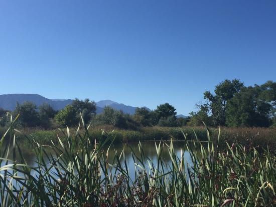 Fountain, CO: Gorgeous view of the mountains