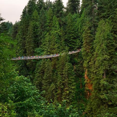 North Vancouver, Canada: Amazing views!