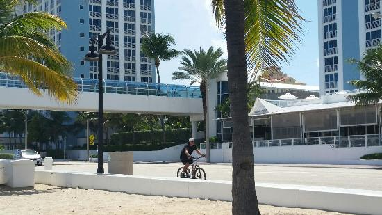 hotel from beach picture of the westin fort lauderdale beach rh tripadvisor ie