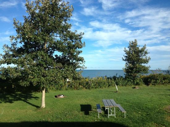 Brocton, Nowy Jork: Lake Erie State Park