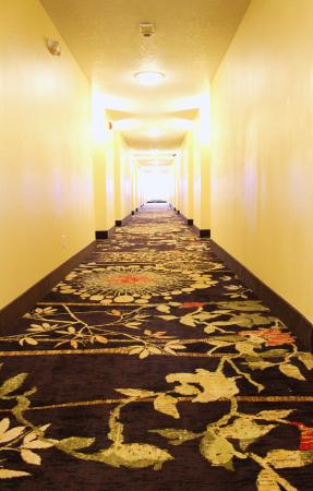Roosevelt, UT: Interior Corridors